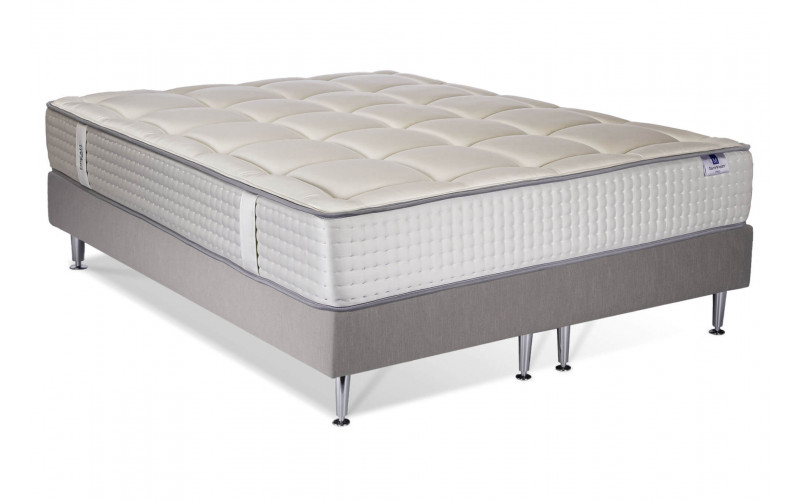 Ensemble Dreamtech Silver majesty - Easysom Sable