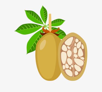 photo d'un fruit